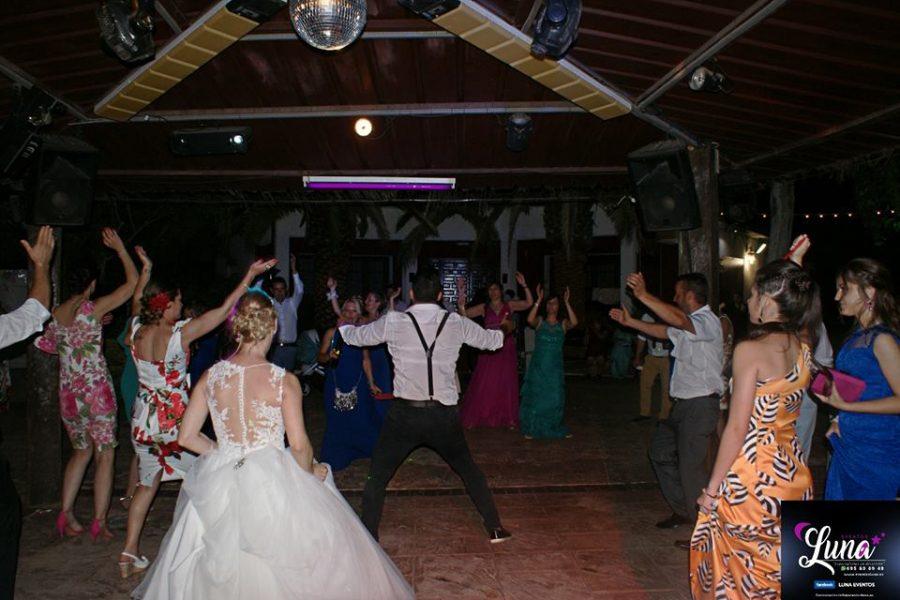 dj + animación bodas